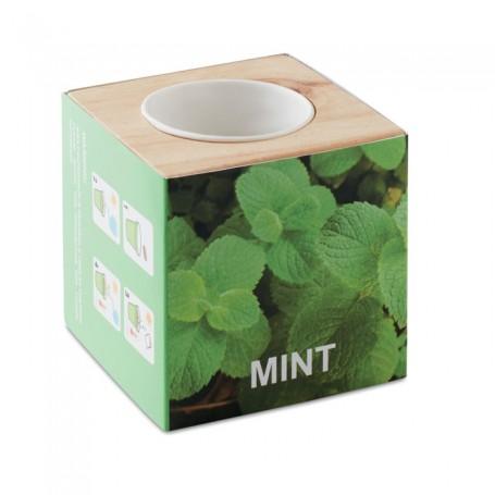 MENTA - Herb pot wood